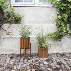 Frost, Plants, Garden, Look, Patio, Balcony, Upcycled Crafts, Garten, Planters