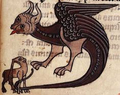 British Library, Sloane MS 278, Folio 57r A large dragon attacks a small elephant. The elephant has an odd trunk and cloven hooves.