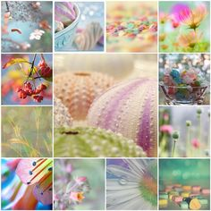 Pastels by LHDumes, via Flickr