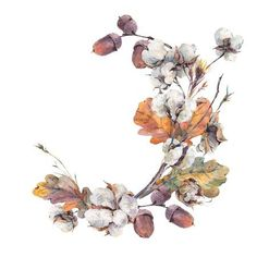 Watercolor autumn vintage wreath of twigs, cotton flower, yellow oak leaves and acorns. Isolated on white background Wreath Watercolor, Watercolor Flowers, Watercolor Paintings, Tattoo Watercolor, Vintage Wreath, Wreath Drawing, Watercolor Illustration, Autumn Illustration, Flower Frame