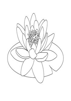 Lily Pad Coloring Page for Kids Lilies Drawing, Pond Drawing, Drawings, Watercolor Flowers Tutorial, Simple Flower Drawing, Flower Drawing Tutorials, Super Coloring Pages, Koi Watercolor, Flower Tattoo