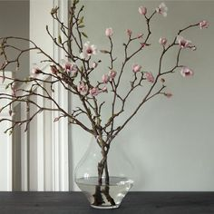 Louisiana state flower is the magnolia; these tulip magnolia branches offer a colorful floral greeting.