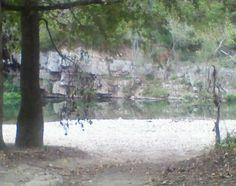On the lil missouri river