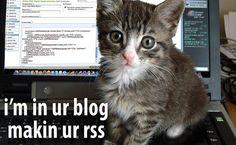 LOLcat, il nuovo linguaggio offerto da Twitter http://www.geekissimo.com/2013/02/10/lolcat-il-nuovo-linguaggio-offerto-da-twitter/#