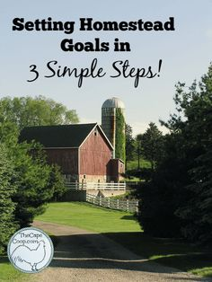 Setting Homestead Goals in 3 Simple Steps! - The Cape Coop Backyard Poultry, Backyard Farming, Chickens Backyard, Log Cabin Living, How To Make Decorations, Wild Edibles, Urban Farming, Natural Home Remedies, Simple Living