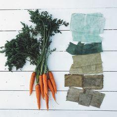 Alicia Hall_Botanical Threads / How to make green Shibori, Natural Dye Fabric, Natural Dyeing, Tinta Natural, Fabric Dyeing Techniques, How To Make Greens, How To Dye Fabric, Dyeing Fabric, Dyeing Yarn
