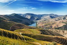 Sipping the Douro (Portugal). 'The exquisite Alto Douro wine country is the oldest demarcated wine region on earth. Its steeply terraced hills, stitched together with craggy vines that have produced luscious wines for centuries, loom on both sides of the sinuous Rio Douro. Whether you get here by driving the impossibly scenic back roads, or catch a train or boat from Porto, take the time to hike, cruise and taste.' http://www.lonelyplanet.com/portugal