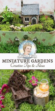 Miniature garden ideas including plant choices, accessories, themes, scale (good proportions), and projects. Also tips for fairy gardens. #RaisedGarden