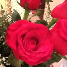 2012 v say flowers! Love u babe!!!