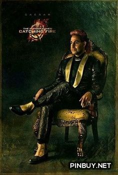 The Hunger Games: Catching Fire #Movies