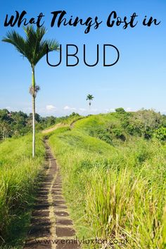 Ubud Travel Costs and Guide. Everything you need to know to help you plan your trip to Bali, whatever your budget.