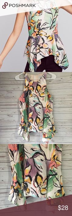 HD in Paris Lucille Peplum Waterfall Hem Top Gorgeous blouse has a peplum style which has a waterfall hem. It zips in the back and the colors are gorgeous. Great used condition with no stains or holes but does have some piling around the arms holes. Smoke free/pet friendly home. Anthropologie Tops Blouses