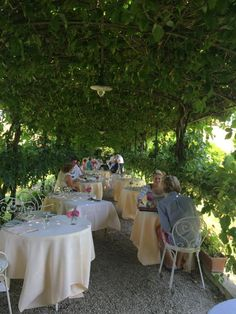 Locanda Cipriani-Beautiful luncheon, Venice - Torcello 29. 30 mins outside of Venice on island. Great setting, food slightly average & pricey.