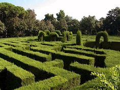 Maze, Parc del Laberint d'Horta Barcelona (Spain).  I WANT TO WALK THROUGH THIS!!!!