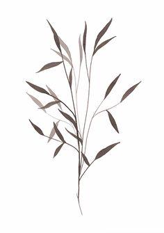 Watercolor Leaves, Abstract Watercolor, Future Tattoos, New Tattoos, Leaves Sketch, Art Minimaliste, Plant Tattoo, Japan Painting, Leaf Illustration