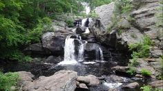 Connecticut: Devil's Hopyard State Park is a state park known for its hiking, stream fishing, bird watching and camping opportunities. The park is home to the beautiful Chapman Falls, Vista Point and lots of wildlife