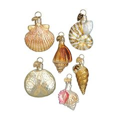 Old World Christmas Assorted Sea Shell Set Glass Blown Ornament
