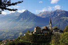 Alto-Adige-Vineyards-View-Epic-Travel-Italy-Schimonski