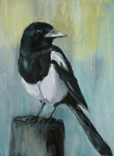 vogels > ekster > Peter Kromhout