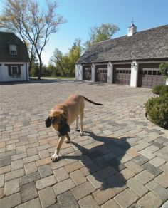 Camelot paver driveway by Unilock Driveway Design, Driveway Ideas, Exterior Paint Colors For House, Landscaping Supplies, Cool Landscapes, Photo Projects, Pavement, Curb Appeal, Gallery