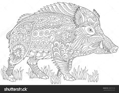 Stylized wild boar (razorback, warthog, hog, pig), isolated on white background. Freehand sketch for adult anti stress coloring book page with doodle and zentangle elements.