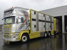 Livestock, Volvo, Trucks, King, 3d, Vehicles, Truck, Car, Vehicle