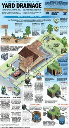 Collect or drain? Ways to handle water on your property – Orange County Register