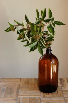 DIY: ideas for simple inexpensive arrangements