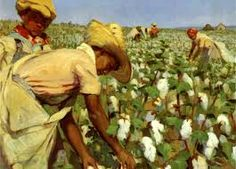 cotton picking old photos - Google Search