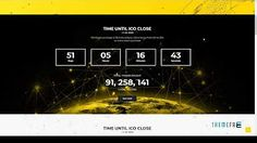 Cryptocurrency, Wordpress Theme, Watch, Youtube, Clock, Wrist Watches, Youtube Movies, Wordpress Template