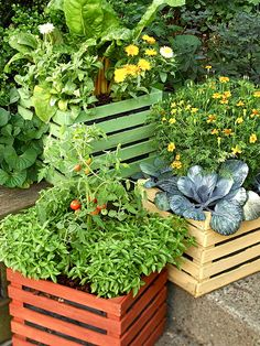 Container gardening. Use the old palettes out back.
