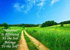 Soil Gives you #Food and Clean #Environment. Everything related to soil affects your surroundings.