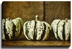 Gourds by Lisa Russo Photographic Print on Wrapped Canvas