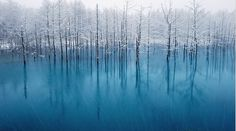 gorgeous blue pond in japan (photo by ken shiraishi.)
