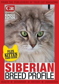 Siberian Breed Profile (Your Cat Magazine Breed Profiles) by Laura Hall. $2.99