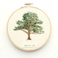 English Oak. I've been planning to start a deciduous tree series after I get through all of the native Colorado evergreens but I was excited to start early when someone commissioned this one! PS Happy Small Business Saturday! Thank you for helping support this little business of mine. I am so lucky to be able to do this. ❤ . . . . . . #olanderco #custommade #englishoak #treestudy #giftideas #holidayshopping #petitejoys #creatorslane #creativehappylife #mamamaker #modernmaker…