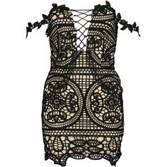 Boohoo Petite Lola Lace Off The Shoulder Bodycon Dress ($52) ❤ liked on Polyvore featuring dresses, petite cocktail dress, bodycon cocktail dresses, off the shoulder lace dress, lace dress and off shoulder dress