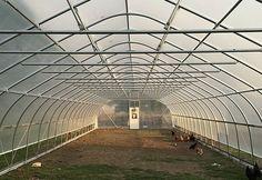 What is the NRCS High Tunnel Initiative? - Grants for High Tunnels Tunnel Greenhouse, Greenhouse Farming, Best Greenhouse, Greenhouse Plans, Cattle Panels, Farm Business, Begonia, Aquaponics, Trellis