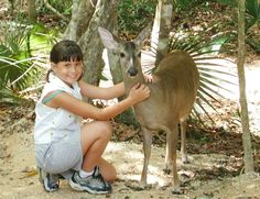 Our park hosts a unqiue tropical forest and an ancient cave with a beautiful cenote Chen, Mexico Tourism, Most Popular Sports, Tropical Forest, Natural Park, Walking By, Riviera Maya, National Geographic, Blog