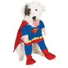 Pet Superhero costumes