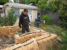 Straw Bale Garden Part II: Watering the Bales | Root Simple
