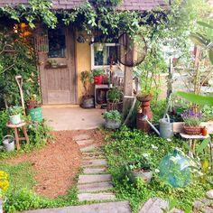 2016 6・3 Good morning! いつも、「いいね」にたくさんのコメントをありがとうございます。 お返事が遅れてしまったり、返せなかったで、ごめんなさい。 #ナチュラルガーデン #マイガーデン #小屋 #錆び錆び #錆び錆びミルク缶 #ミルク缶 #枕木 #小屋の明かり #プミラ #錆びた農具 #流木 #ラベンダー #ジャンクガーデン #庭時間