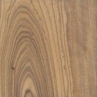 Woods to Know: Olive Vrai Faux, Shiva Lord Wallpapers, Petrified Wood, Woodworking Wood, Types Of Wood, Wood Species, Wood Grain, Animal Print Rug, Craftsman