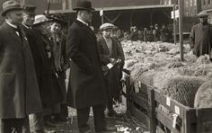 urgemeester Zimmerman (met bolhoed) van Rotterdam bekijkt een veetentoonstelling en veemarkt, met hier in beeld vele schapen. Nederland, Rotterdam, 1917.