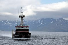 "F/V ""Storm Petrel"" Trawler/Crabber was built in 1980. 123' long"