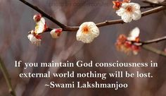 If you maintain God Consciousness in the external world nothing will be lost Swami Lakshmanjoo #KashmirShaivsm