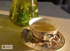 Ogrodnicza Obsesja: Najlepsza herbatka ze świeżych ziół