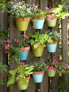 The painted pots make this so much more cheerful!
