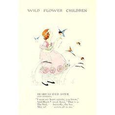 Wild Flower Children c1918 Heart-leaved Aster Canvas Art - Janet Laura Scott (18 x 24)
