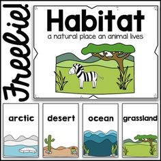 This set of poster cards with 13 different habitats is perfect for a concept wall during a unit about animals and habitats. The simplicity of the cards keeps them from being distracting or confusing, and the clipart images give students a clear understanding of the characteristics of each habitat.Habitats included:arcticdesertoceangrasslandmountainsforestrainforestprairiepondriverbeachcavesavannah